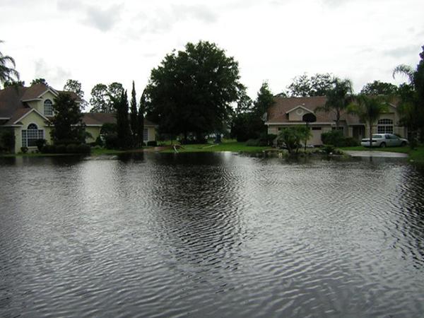Soft Shadow Lane Flooding